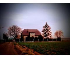 Sprzedam dom z działka 3000 m2 z możliwością dokupienia 3 hektarów